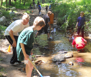 Campers exploring nature by a small creek